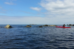Kayaking-Dalkey
